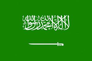 International Courier Mumbai To Saudi